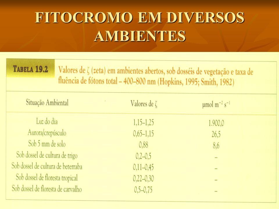 FITOCROMO EM DIVERSOS AMBIENTES
