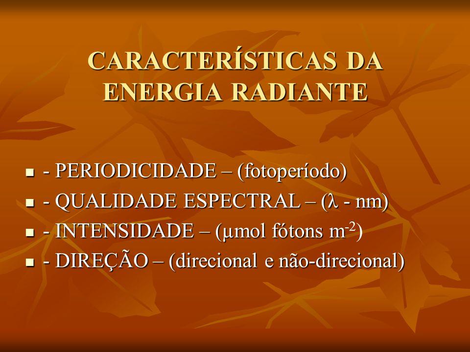 CARACTERÍSTICAS DA ENERGIA RADIANTE - PERIODICIDADE – (fotoperíodo) - PERIODICIDADE – (fotoperíodo) - QUALIDADE ESPECTRAL – (λ - nm) - QUALIDADE ESPEC
