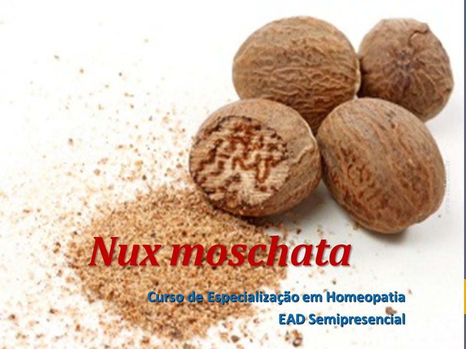 Nux moschata Curso de Especialização em Homeopatia EAD Semipresencial www.cehl.com.br