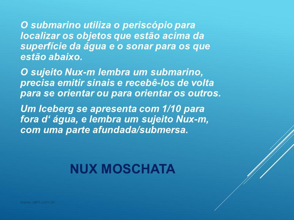 NUX MOSCHATA O submarino utiliza o periscópio para localizar os objetos que estão acima da superfície da água e o sonar para os que estão abaixo. O su