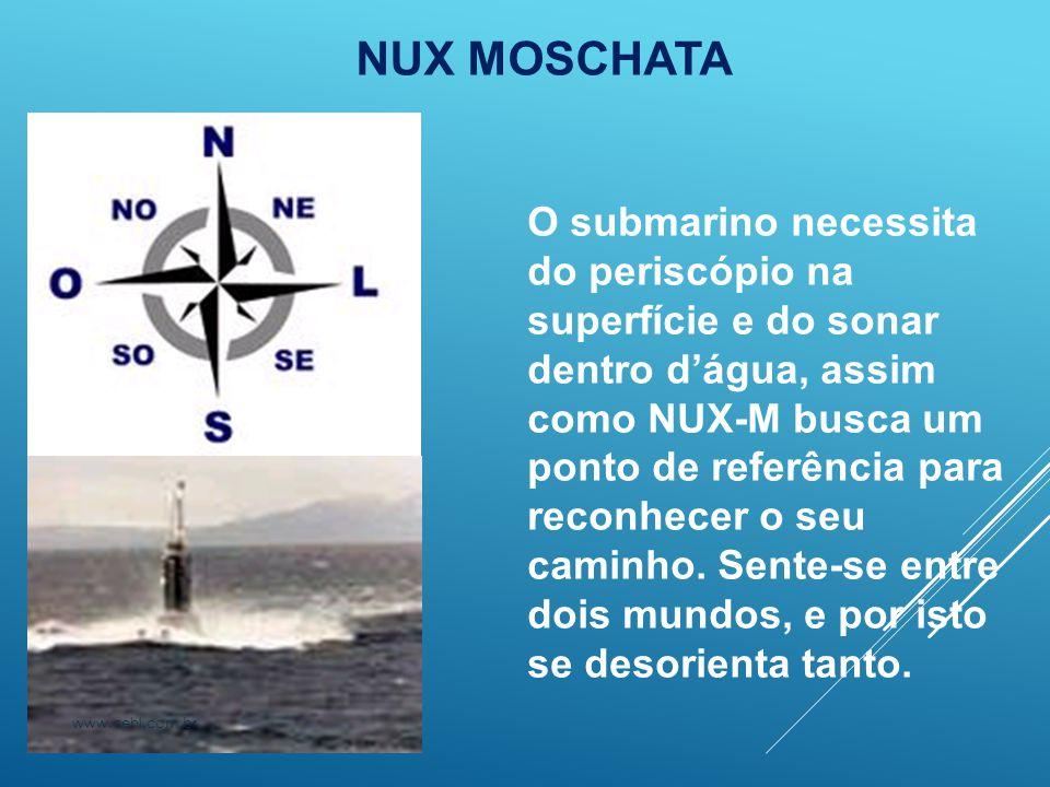NUX MOSCHATA O submarino necessita do periscópio na superfície e do sonar dentro d'água, assim como NUX-M busca um ponto de referência para reconhecer