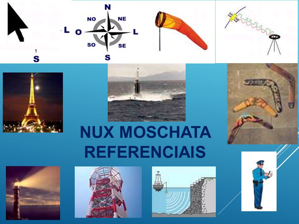 NUX MOSCHATA REFERENCIAIS www.cehl.com.br