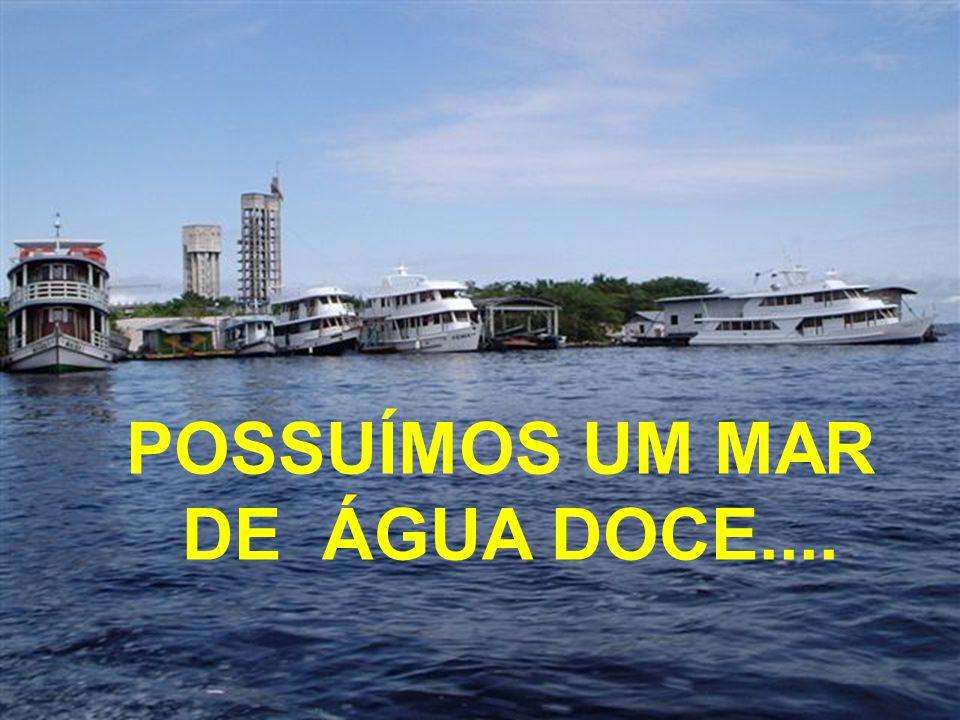 NOSSO BRASIL É PRIVILEGIADO...