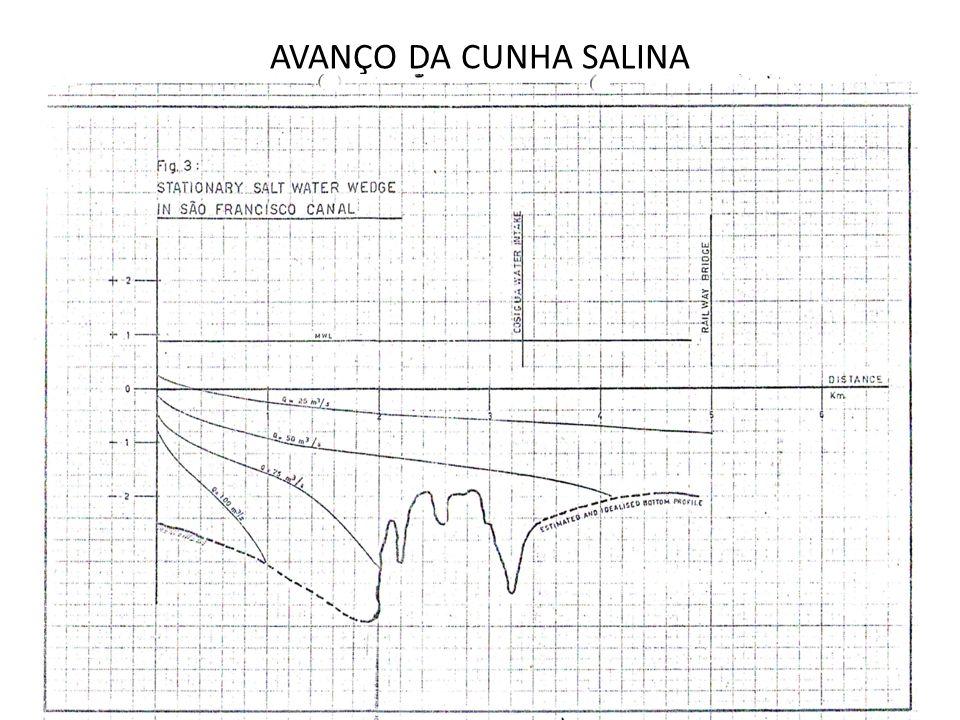 AVANÇO DA CUNHA SALINA