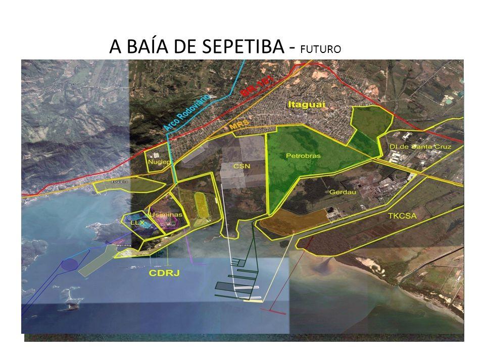 A BAÍA DE SEPETIBA - FUTURO