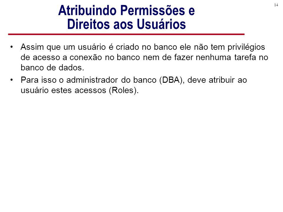 14 Atribuindo Permissões e Direitos aos Usuários Assim que um usuário é criado no banco ele não tem privilégios de acesso a conexão no banco nem de fazer nenhuma tarefa no banco de dados.