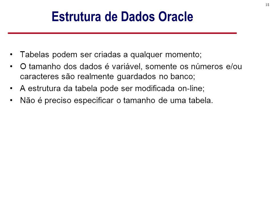 18 Estrutura de Dados Oracle Tabelas podem ser criadas a qualquer momento; O tamanho dos dados é variável, somente os números e/ou caracteres são realmente guardados no banco; A estrutura da tabela pode ser modificada on-line; Não é preciso especificar o tamanho de uma tabela.