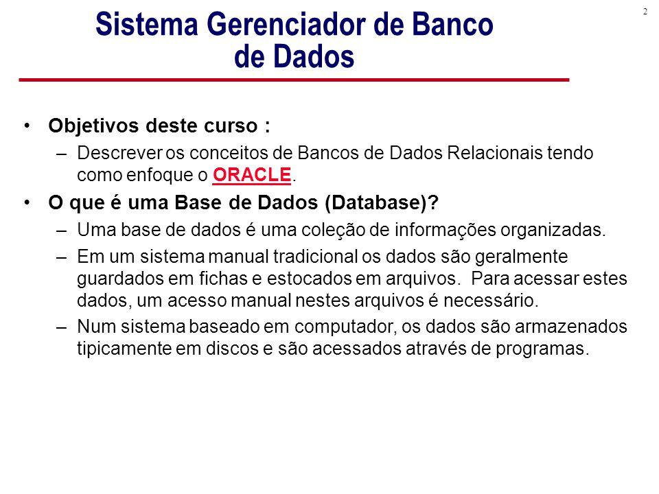 2 Sistema Gerenciador de Banco de Dados Objetivos deste curso : –Descrever os conceitos de Bancos de Dados Relacionais tendo como enfoque o ORACLE.
