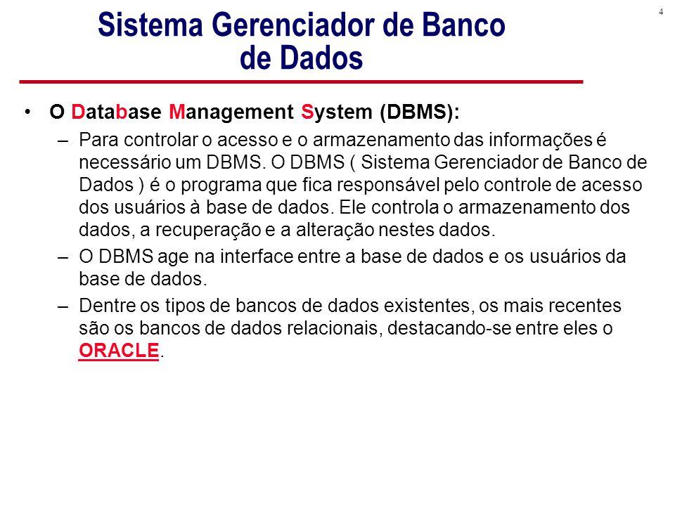 4 Sistema Gerenciador de Banco de Dados O Database Management System (DBMS): –Para controlar o acesso e o armazenamento das informações é necessário um DBMS.