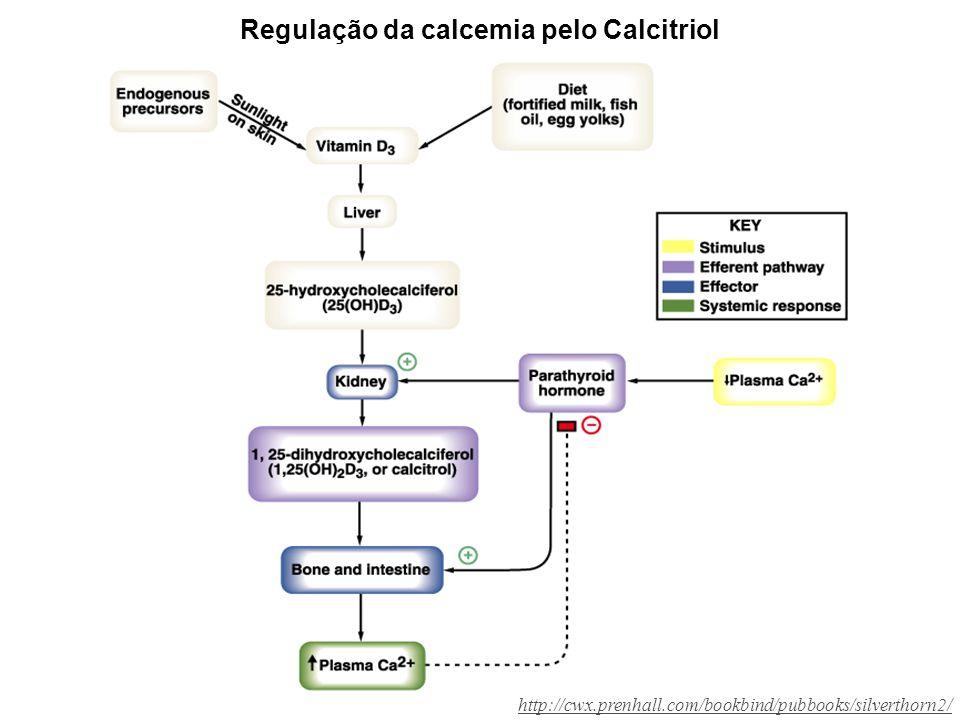 Regulação da calcemia pelo Calcitriol http://cwx.prenhall.com/bookbind/pubbooks/silverthorn2/