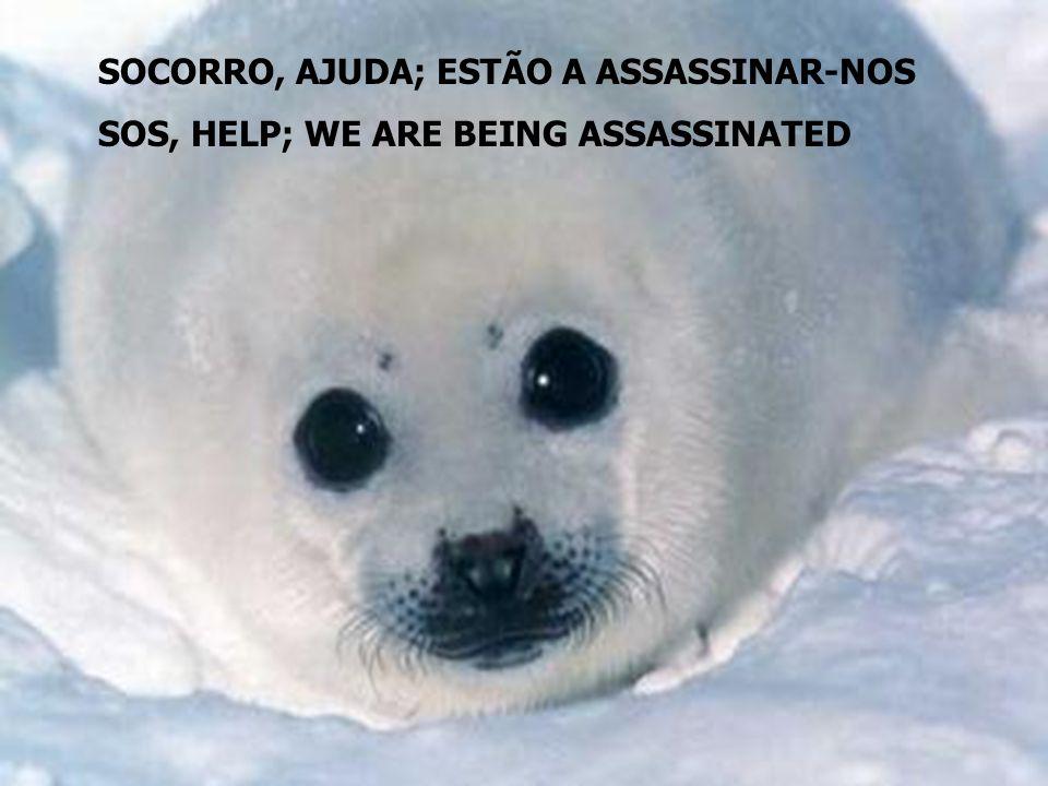 SOCORRO, AJUDA; ESTÃO A ASSASSINAR-NOS SOS, HELP; WE ARE BEING ASSASSINATED