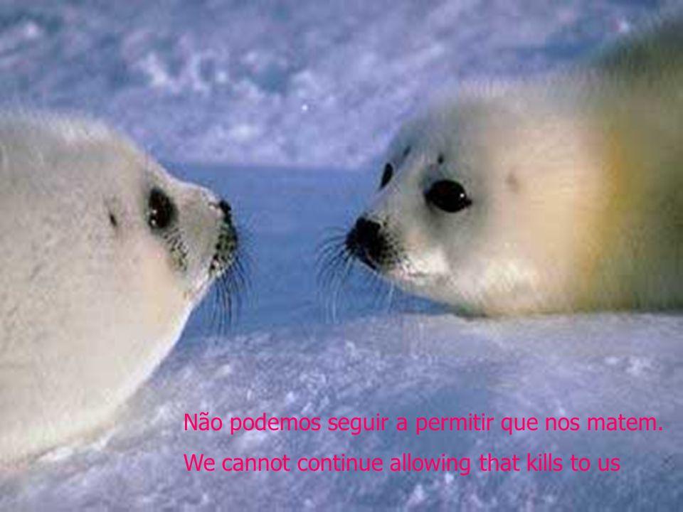Não podemos seguir a permitir que nos matem. We cannot continue allowing that kills to us