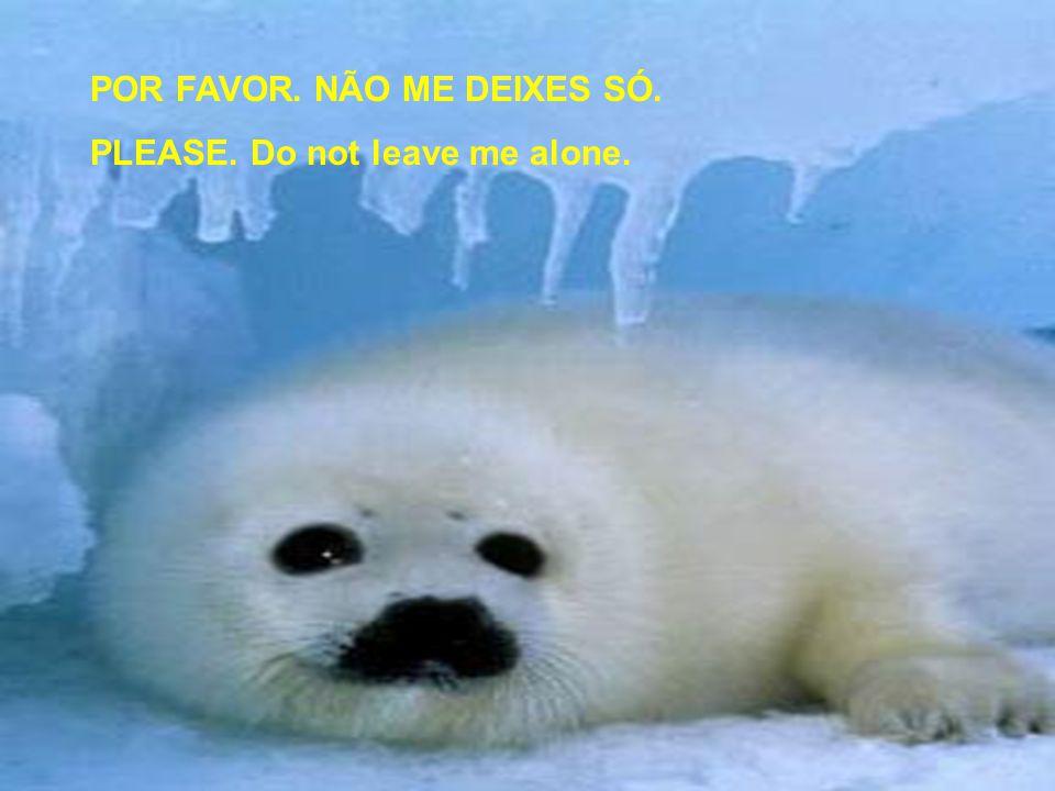 POR FAVOR. NÃO ME DEIXES SÓ. PLEASE. Do not leave me alone.