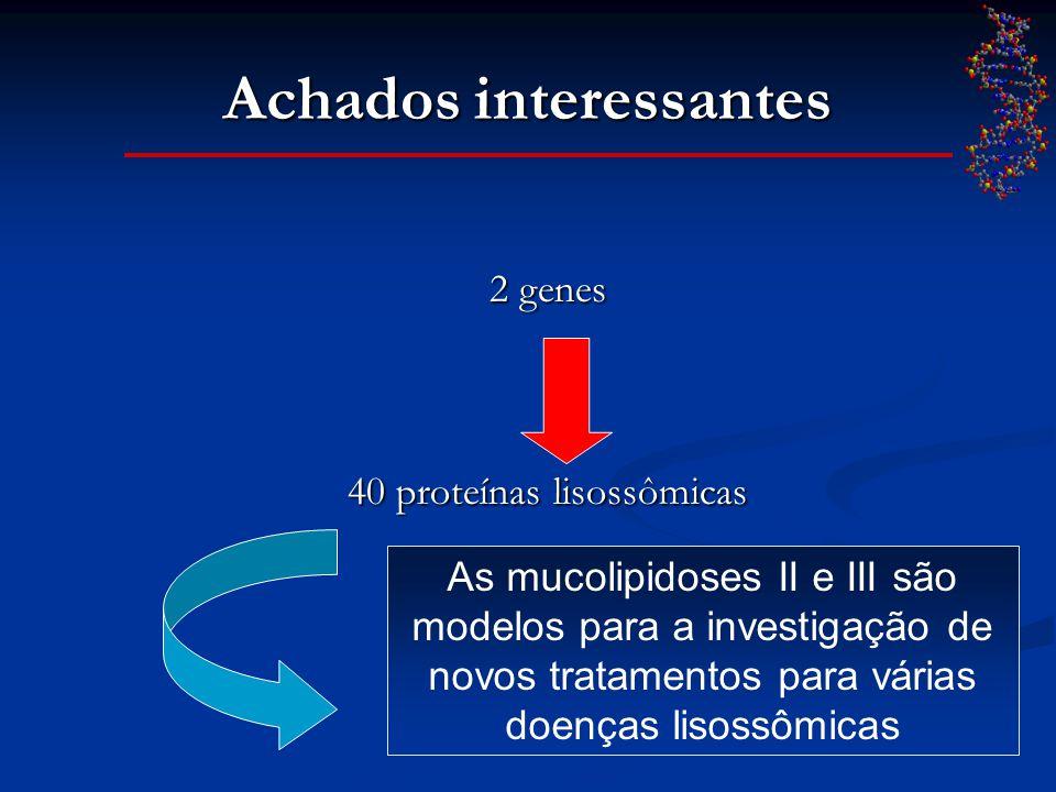 Achados interessantes 2 genes 40 proteínas lisossômicas As mucolipidoses II e III são modelos para a investigação de novos tratamentos para várias doe