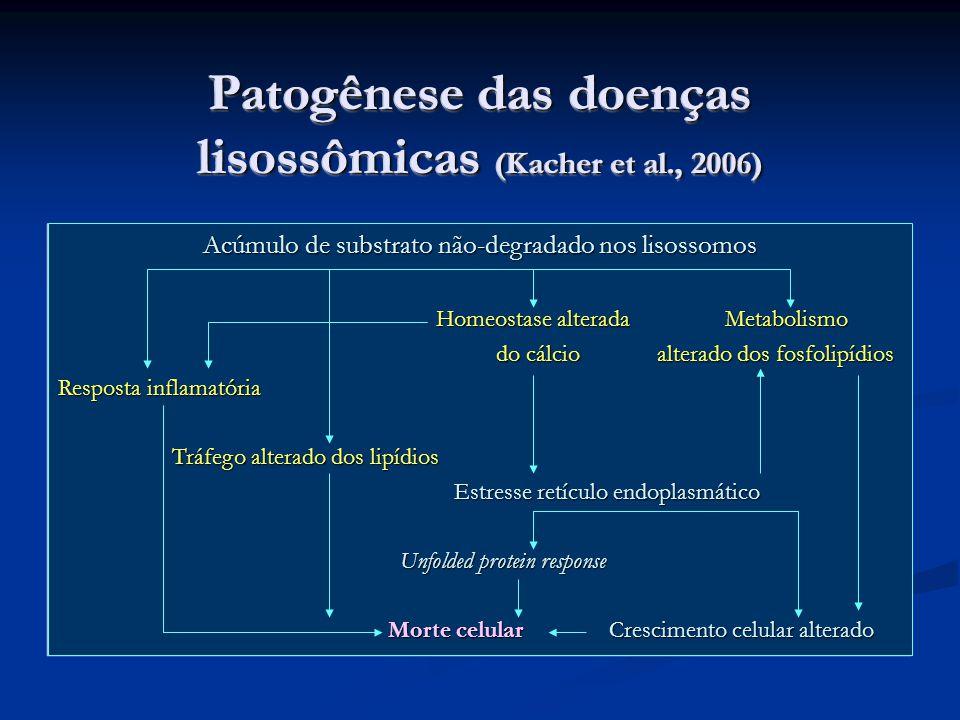 Patogênese das doenças lisossômicas (Kacher et al., 2006) Acúmulo de substrato não-degradado nos lisossomos Homeostase alterada Metabolismo Homeostase