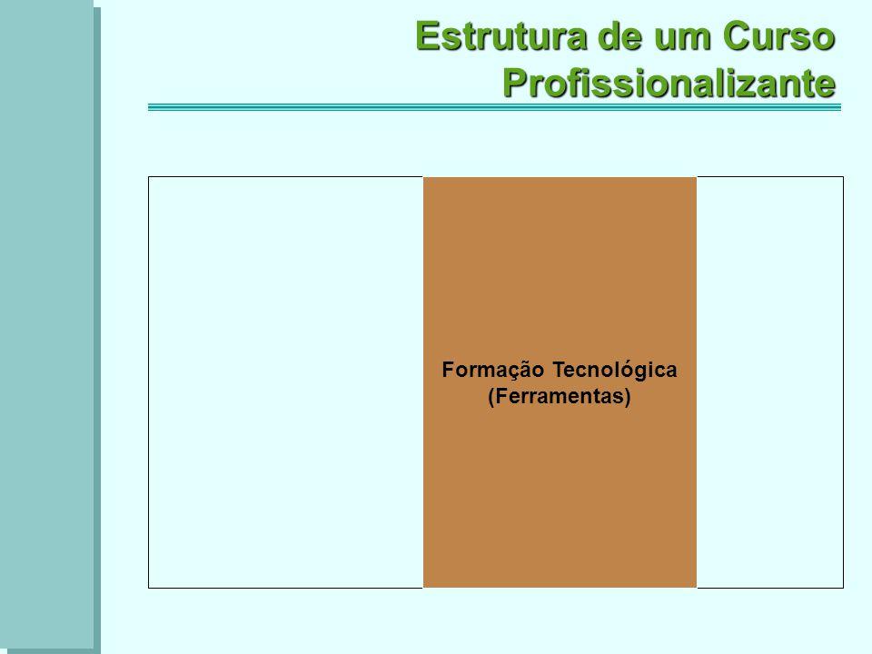 Formação Tecnológica (Ferramentas) Estrutura de um Curso Profissionalizante