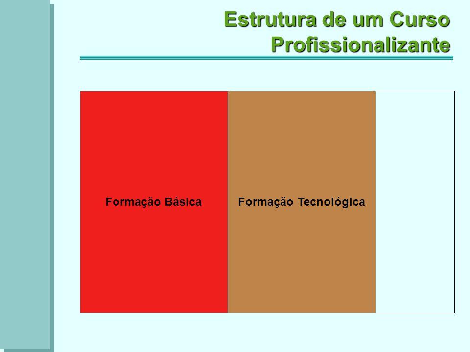 Formação Tecnológica Estrutura de um Curso Profissionalizante Formação Básica