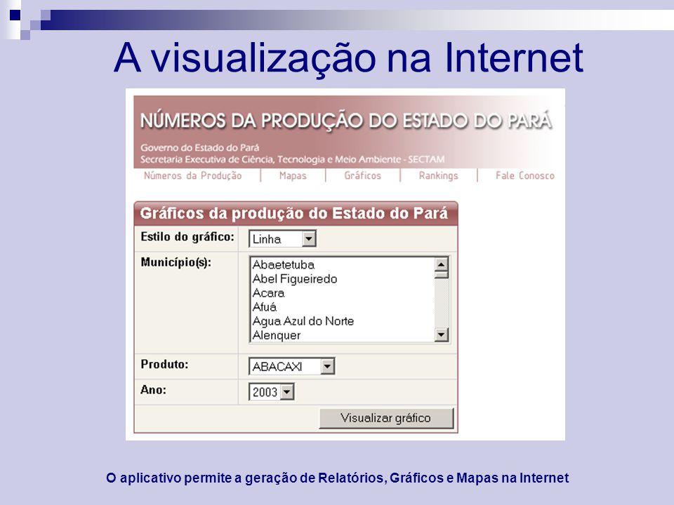 A visualização na Internet O aplicativo permite a geração de Relatórios, Gráficos e Mapas na Internet