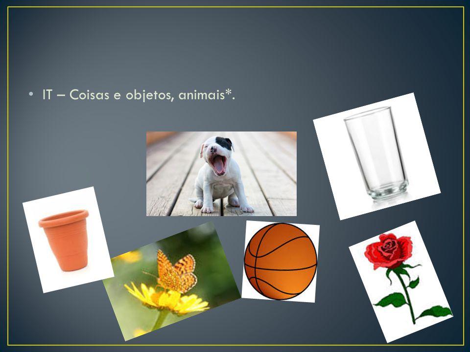 IT – Coisas e objetos, animais*.