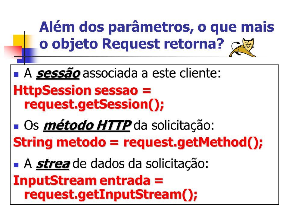 Além dos parâmetros, o que mais o objeto Request retorna.