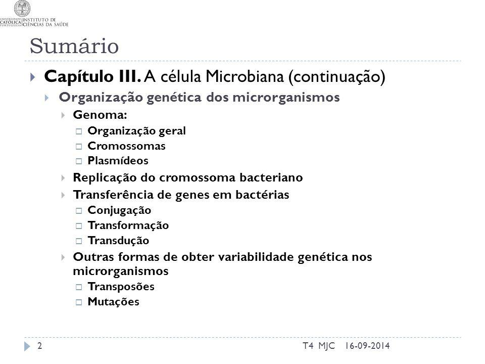 Sumário T4 MJC2  Capítulo III. A célula Microbiana (continuação)  Organização genética dos microrganismos  Genoma:  Organização geral  Cromossoma