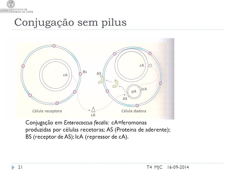Conjugação sem pilus 16-09-2014T4 MJC21 Conjugação em Enterococcus fecalis: cA=feromonas produzidas por células recetoras; AS (Proteina de aderente);