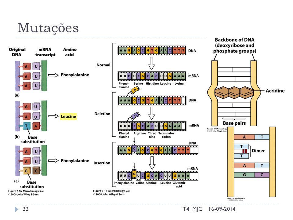 Mutações 16-09-2014T4 MJC22