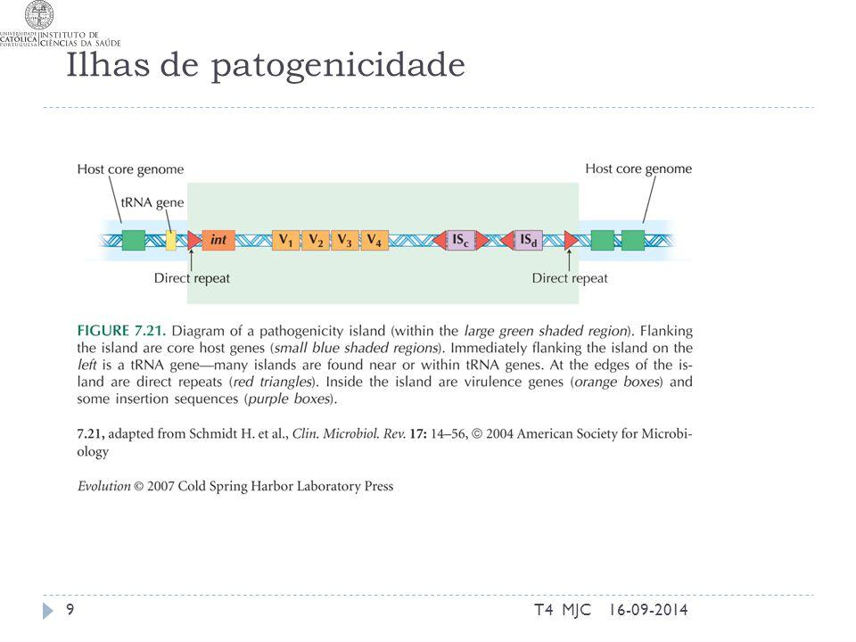Ilhas de patogenicidade 16-09-2014T4 MJC9