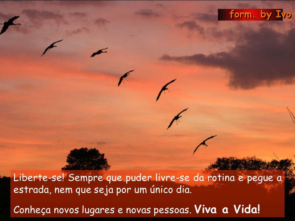 form. by Ivo Não deixe que a saudade sufoque, que a rotina acomode, que o medo impeça de tentar.