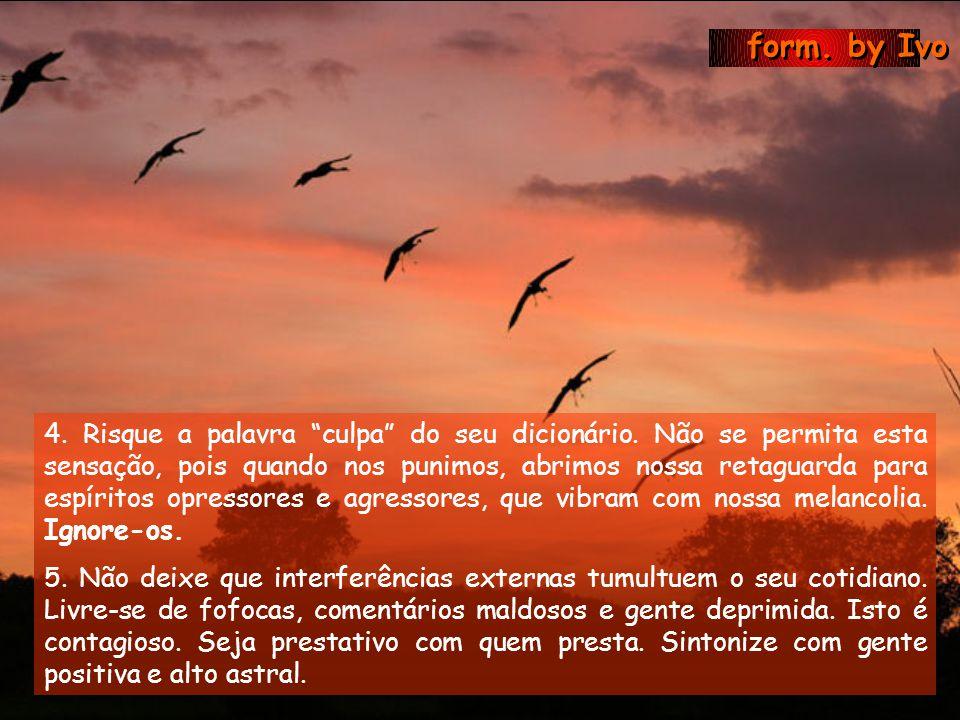 form.by Ivo 4. Risque a palavra culpa do seu dicionário.