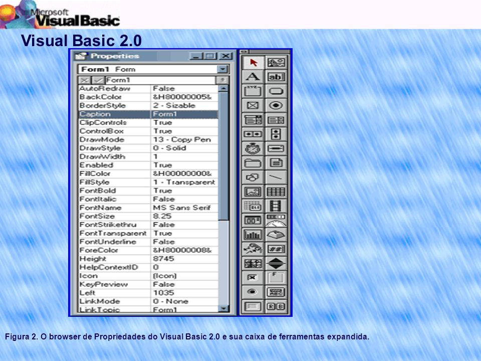 Visual Basic 2.0 Figura 2.
