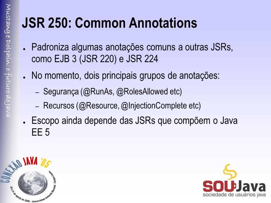 Mustang e Dolphin: o futuro do Java JSR 250: Common Annotations ● Padroniza algumas anotações comuns a outras JSRs, como EJB 3 (JSR 220) e JSR 224 ● No momento, dois principais grupos de anotações: – Segurança (@RunAs, @RolesAllowed etc) – Recursos (@Resource, @InjectionComplete etc) ● Escopo ainda depende das JSRs que compõem o Java EE 5