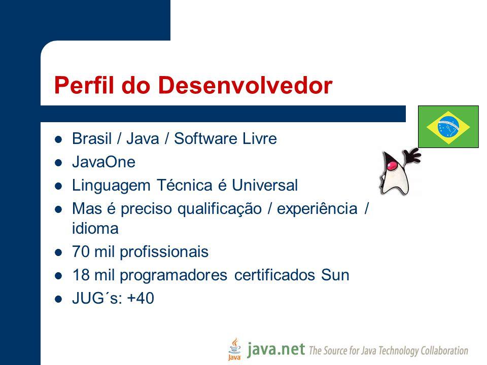 Perfil do Desenvolvedor Brasil / Java / Software Livre JavaOne Linguagem Técnica é Universal Mas é preciso qualificação / experiência / idioma 70 mil