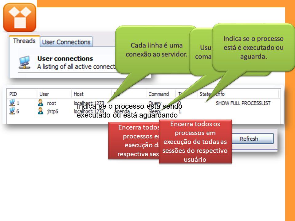 Encerra todos os processos em execução da respectiva sessão Encerra todos os processos em execução de todas as sessões do respectivo usuário Indica se o processo está sendo executado ou está aguardando