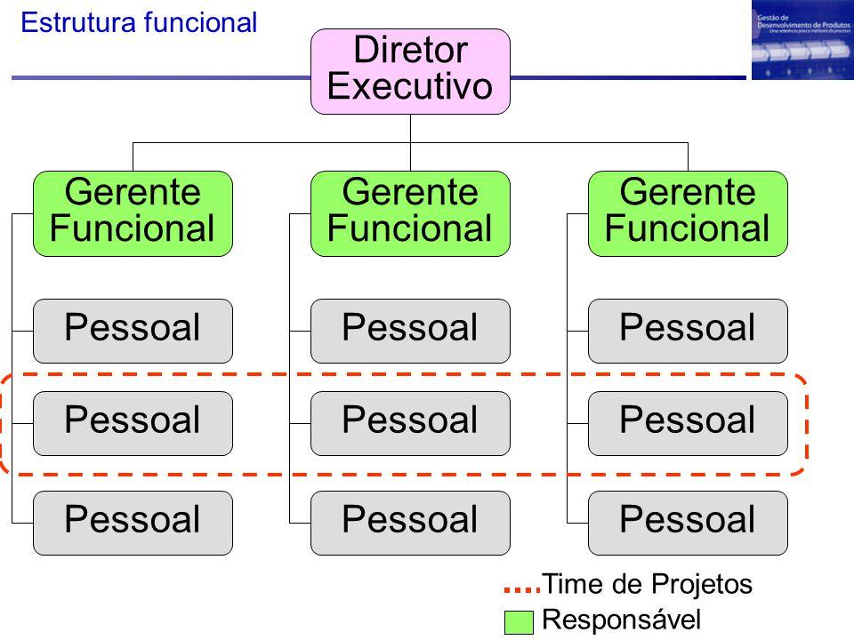 Diretor Executivo Gerente Funcional Pessoal Time de Projetos Responsável Estrutura funcional