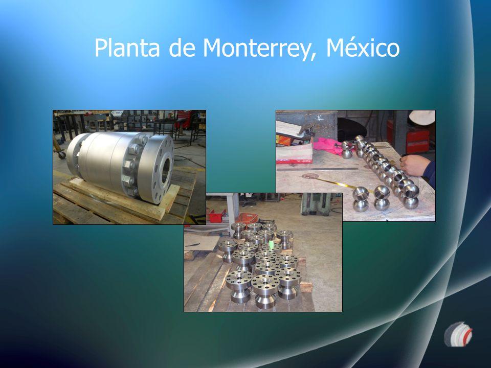 Planta de Monterrey, México
