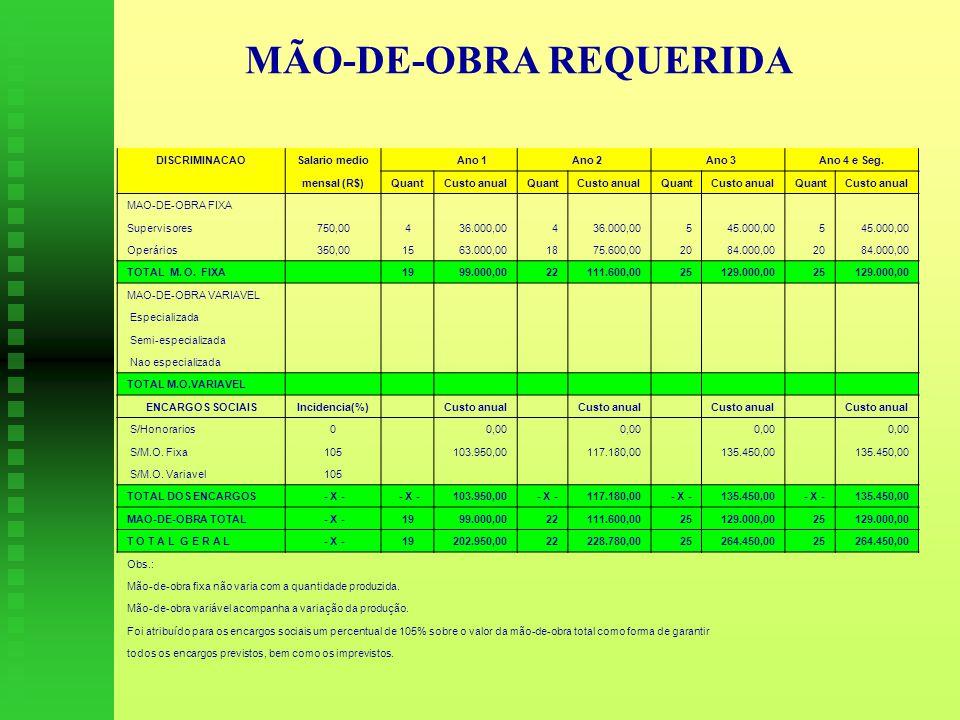 MÃO-DE-OBRA REQUERIDA DISCRIMINACAOSalario medio Ano 1 Ano 2 Ano 3Ano 4 e Seg.