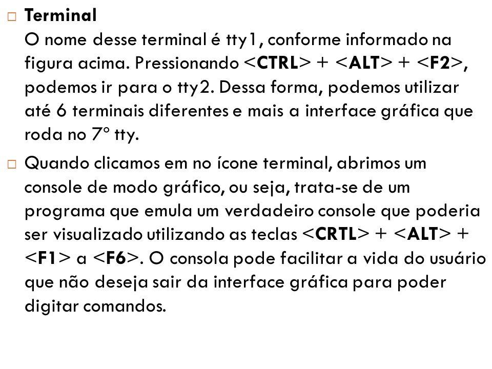  Terminal O nome desse terminal é tty1, conforme informado na figura acima.
