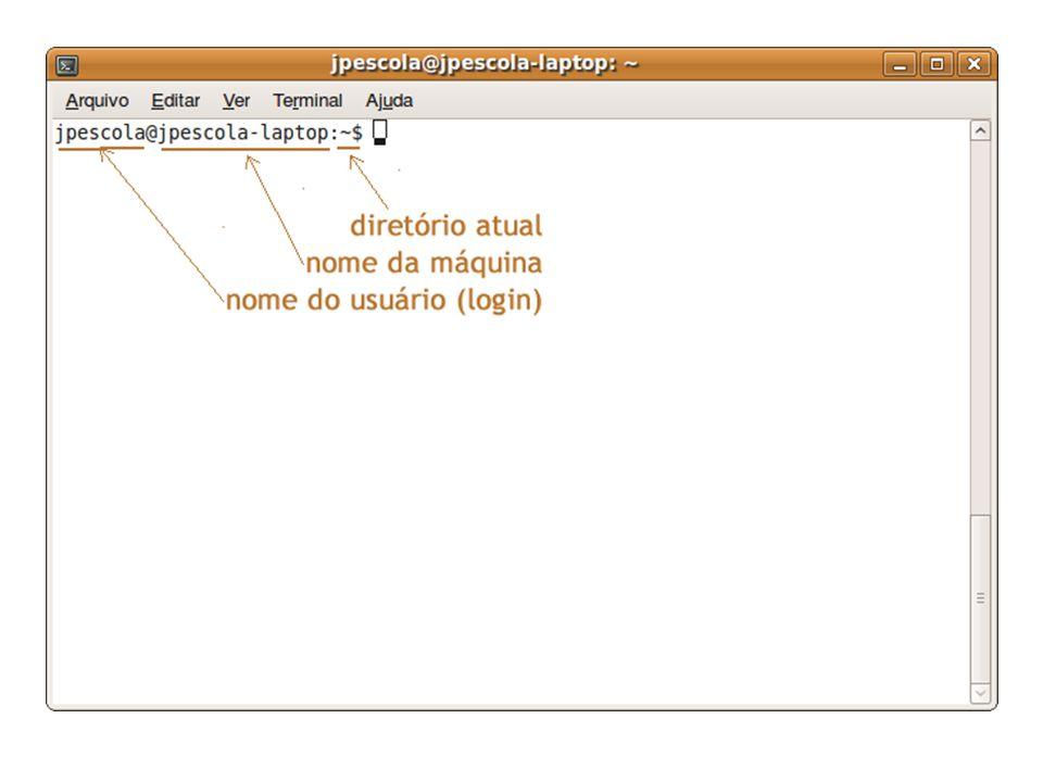 Alguns comandos do Linux aceitam parâmetros, outros não.