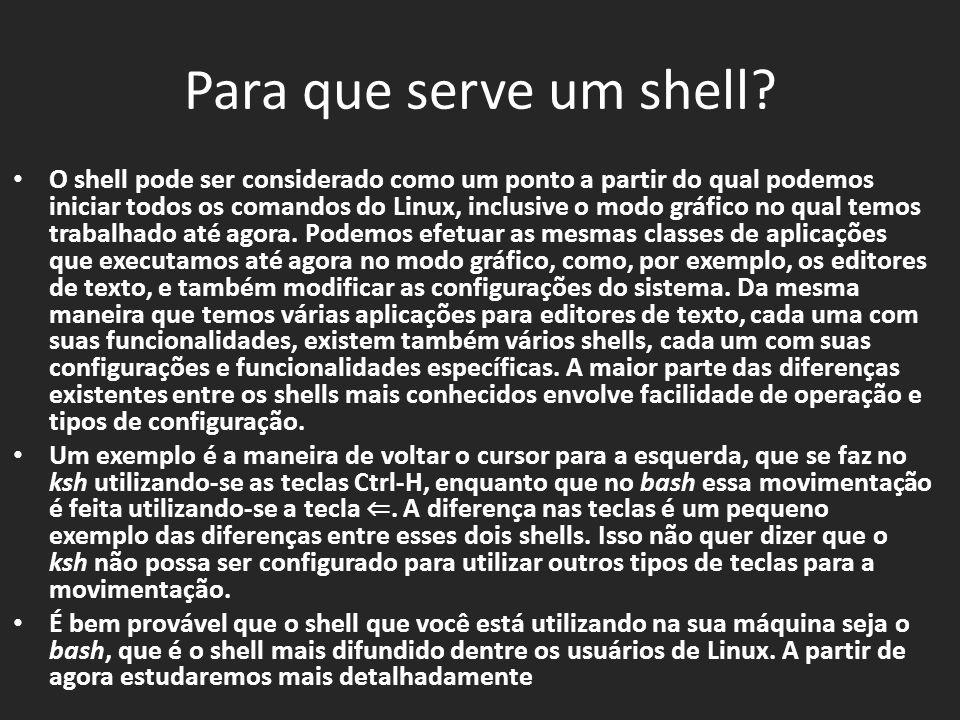 Para que serve um shell.