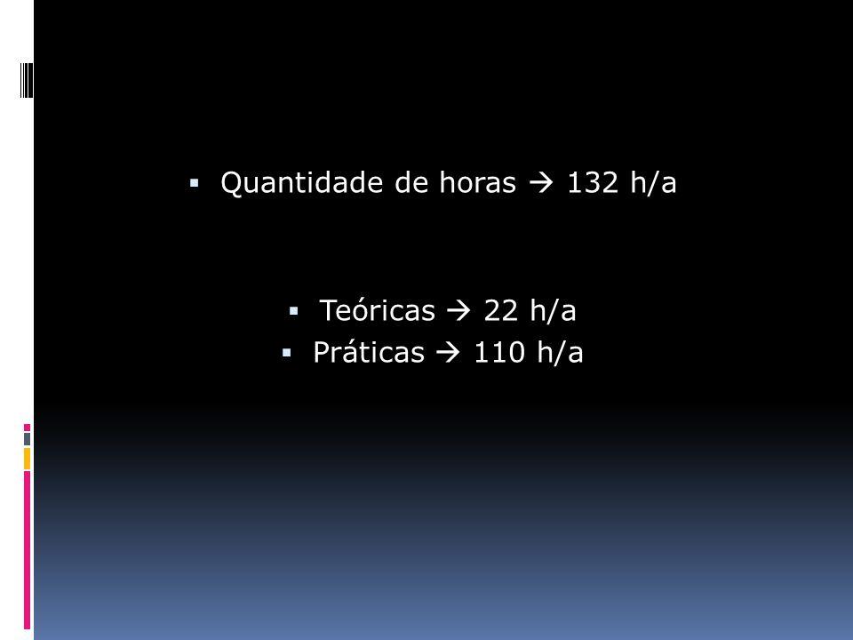  Quantidade de horas  132 h/a  Teóricas  22 h/a  Práticas  110 h/a