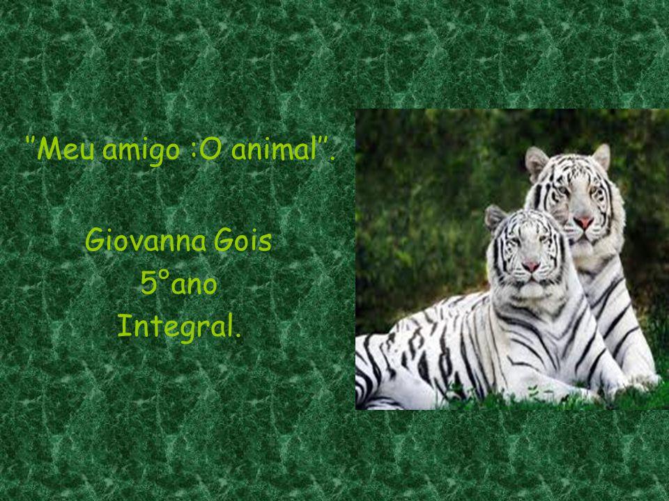  A Importância dos Animais ( Pg.03)  Animais Domésticos ( Pg.