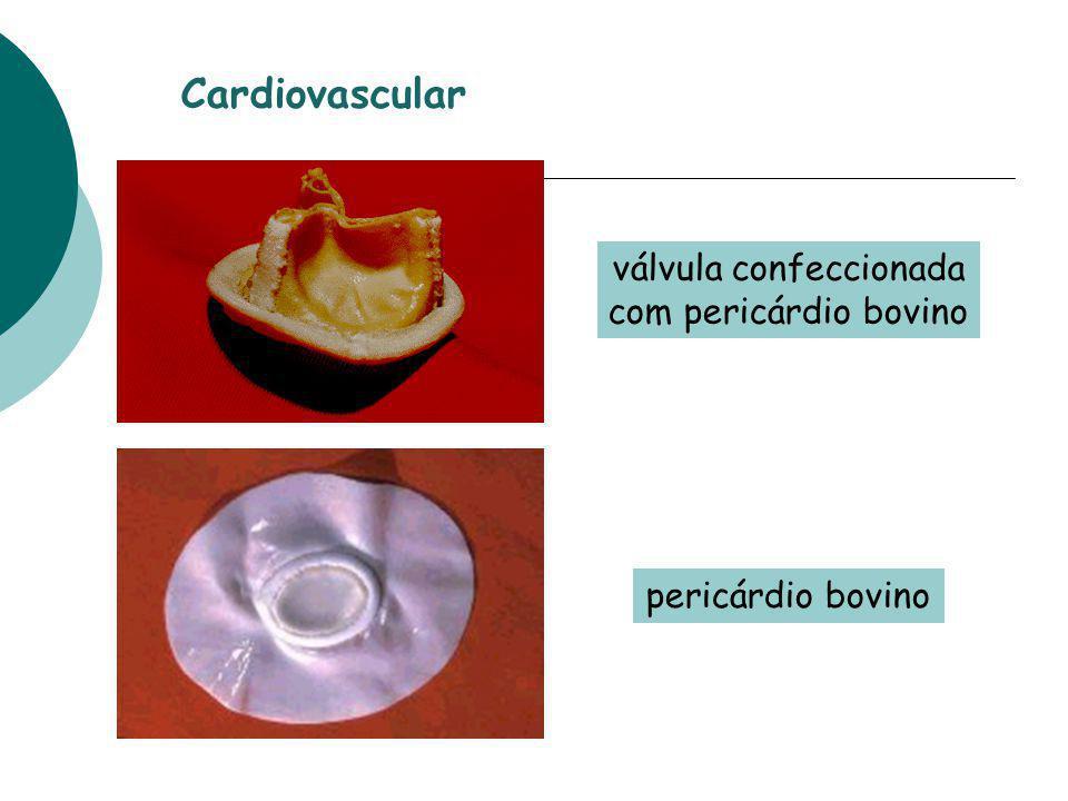 pericárdio bovino válvula confeccionada com pericárdio bovino Cardiovascular