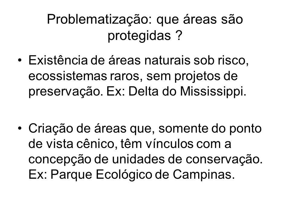 Problematização: que áreas são protegidas ? Existência de áreas naturais sob risco, ecossistemas raros, sem projetos de preservação. Ex: Delta do Miss