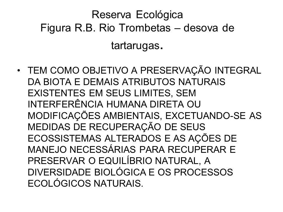 Reserva Ecológica Figura R.B. Rio Trombetas – desova de tartarugas. TEM COMO OBJETIVO A PRESERVAÇÃO INTEGRAL DA BIOTA E DEMAIS ATRIBUTOS NATURAIS EXIS