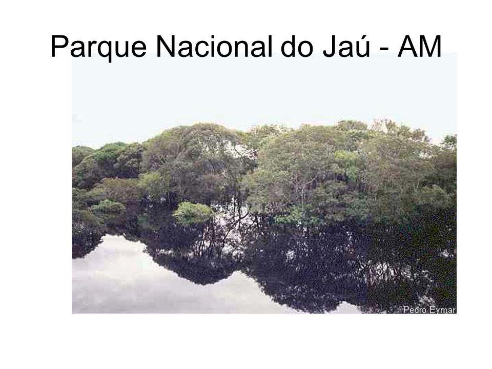 Parque Nacional do Jaú - AM