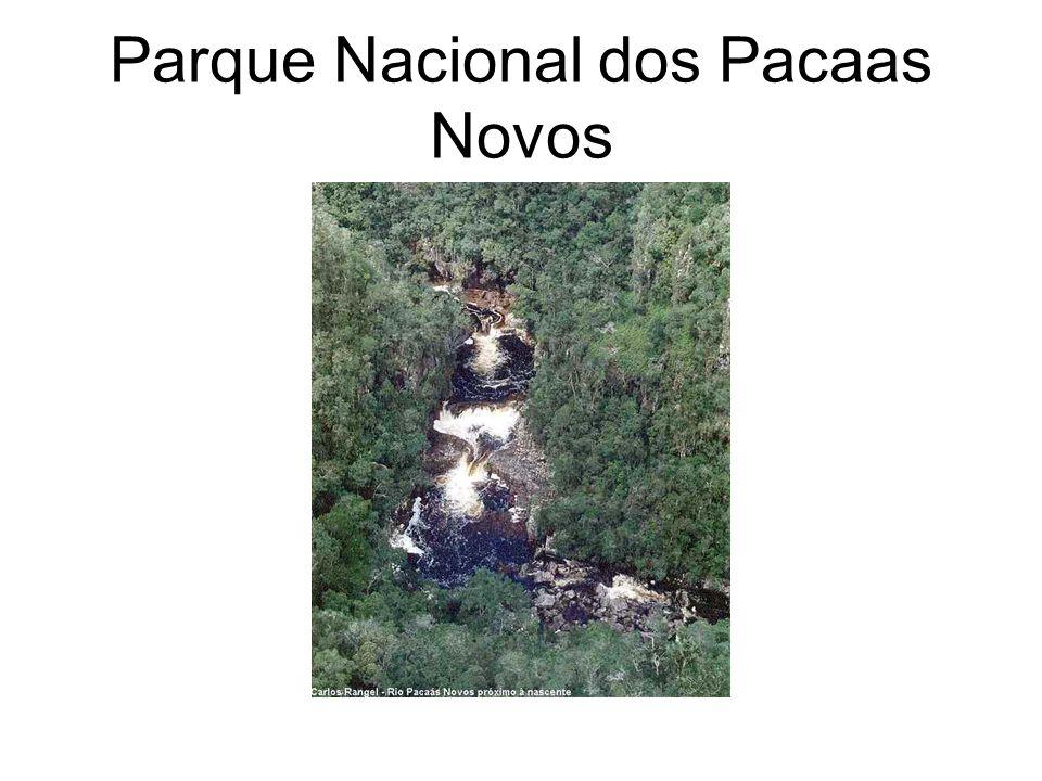 Parque Nacional dos Pacaas Novos