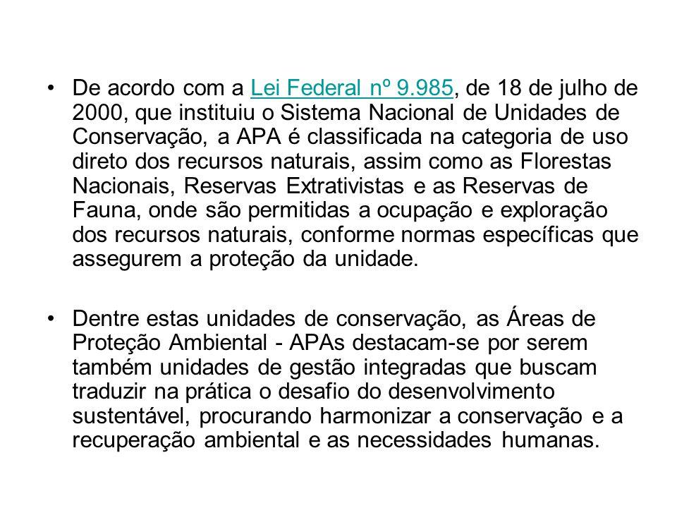De acordo com a Lei Federal nº 9.985, de 18 de julho de 2000, que instituiu o Sistema Nacional de Unidades de Conservação, a APA é classificada na cat