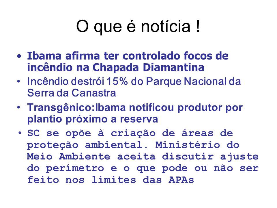 O que é notícia ! Ibama afirma ter controlado focos de incêndio na Chapada Diamantina Incêndio destrói 15% do Parque Nacional da Serra da Canastra Tra