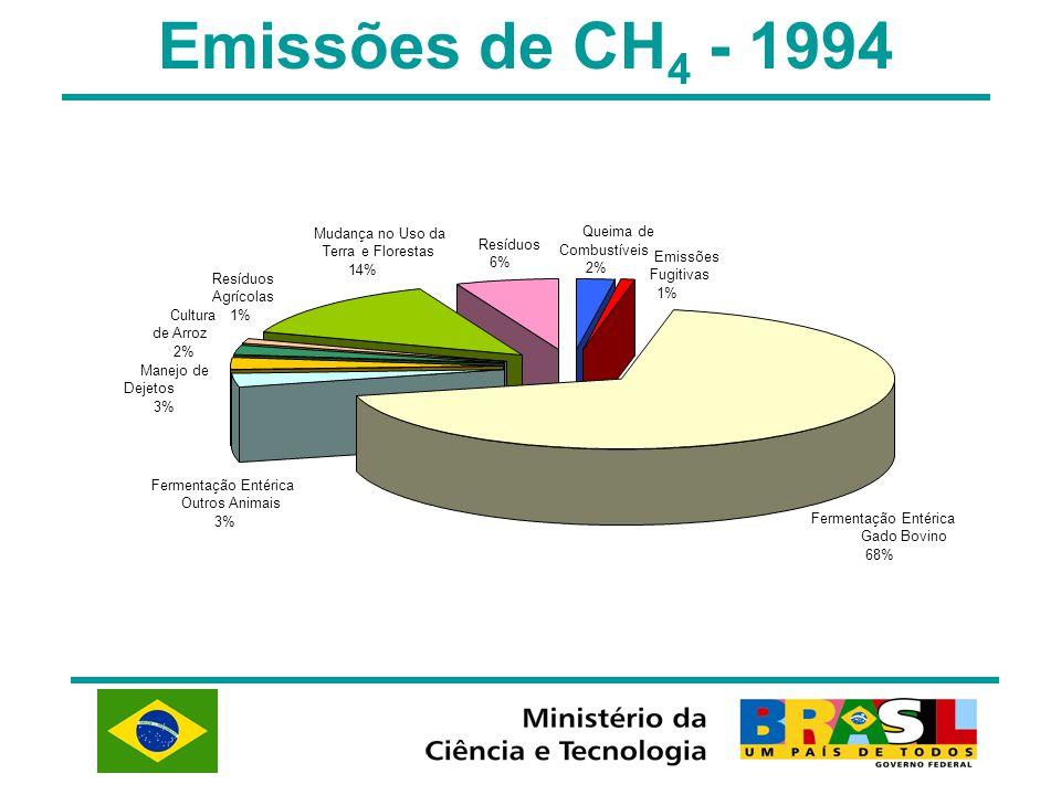 Emissões de CH 4 - 1994 Fermentação Entérica Gado Bovino 68% Manejo de Dejetos 3% Cultura de Arroz 2% Resíduos Agrícolas 1% Mudança no Uso da Terra e
